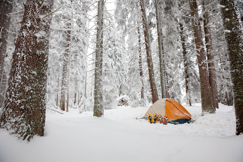 Top Confessions of Planning Disasters in Monsoon Camping