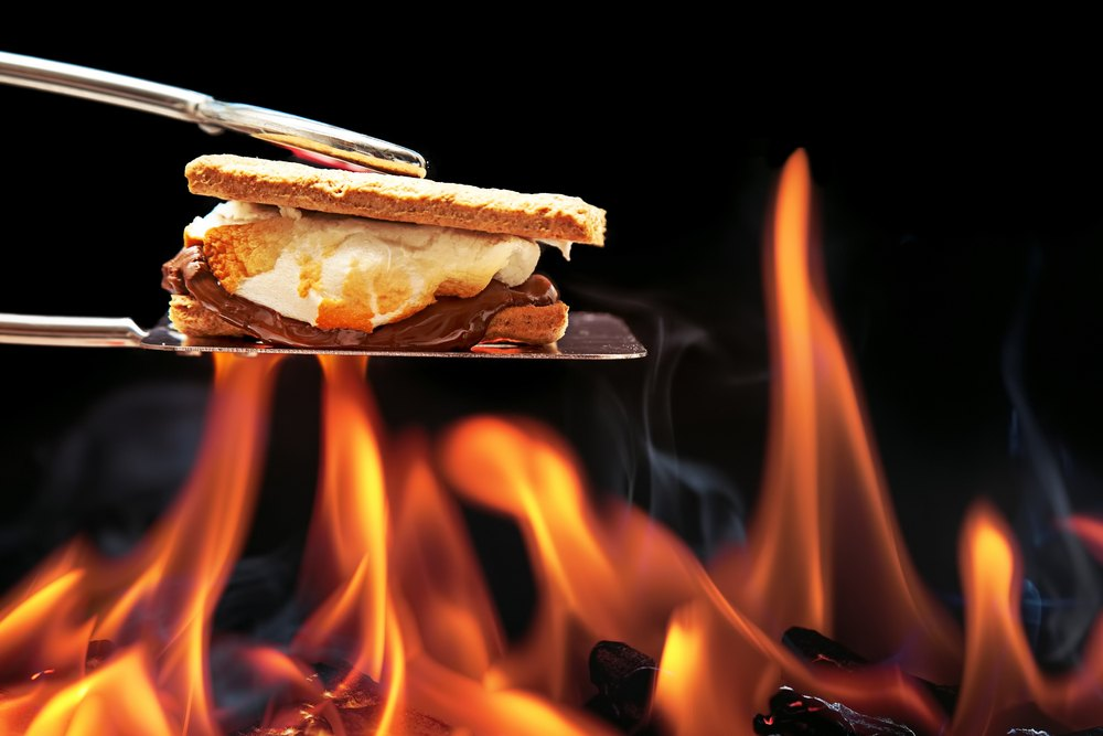 The Art Of Making S'Mores: 7 Different Varieties