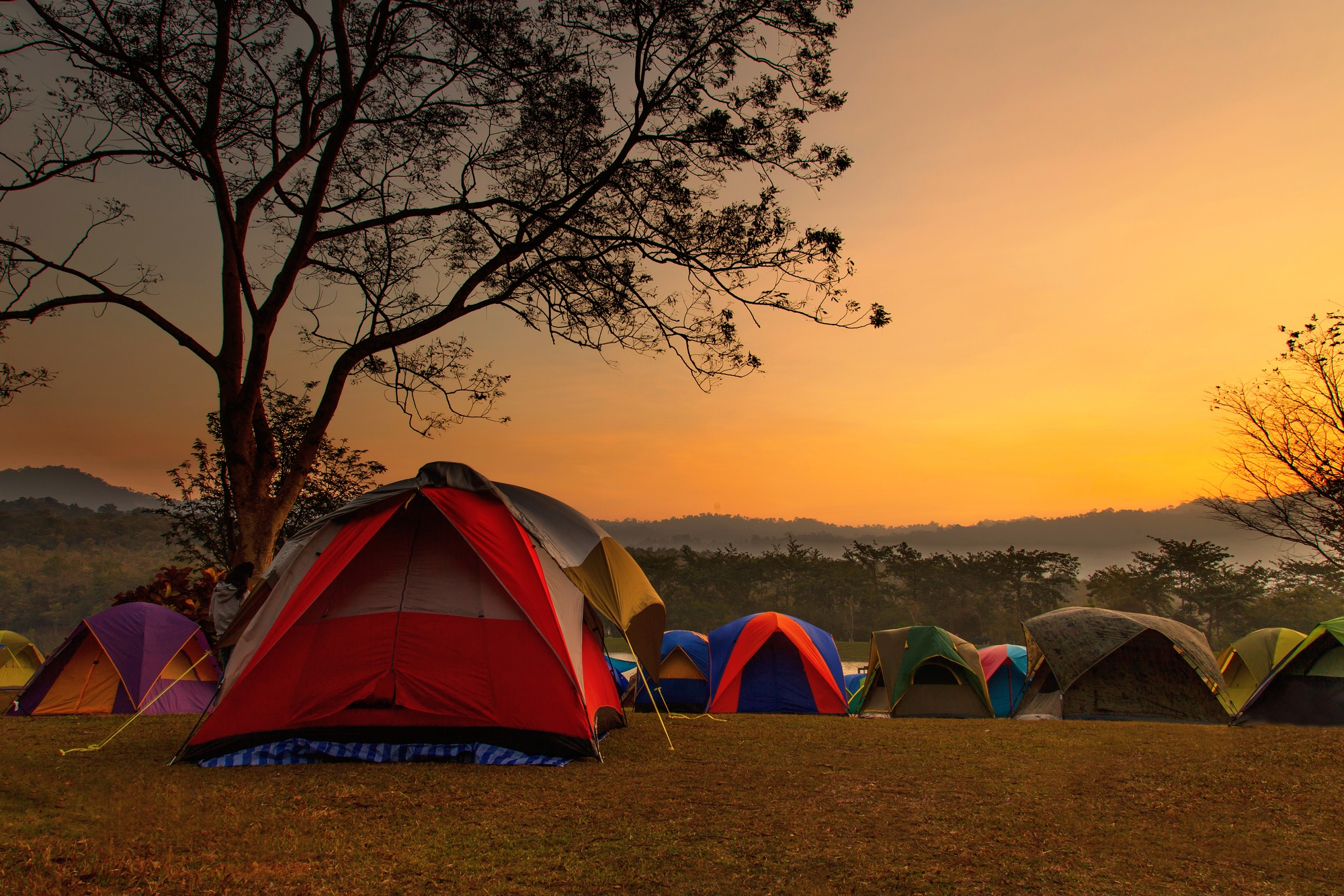 REI Kingdom 4: Is It Right For Your Camping Experience?