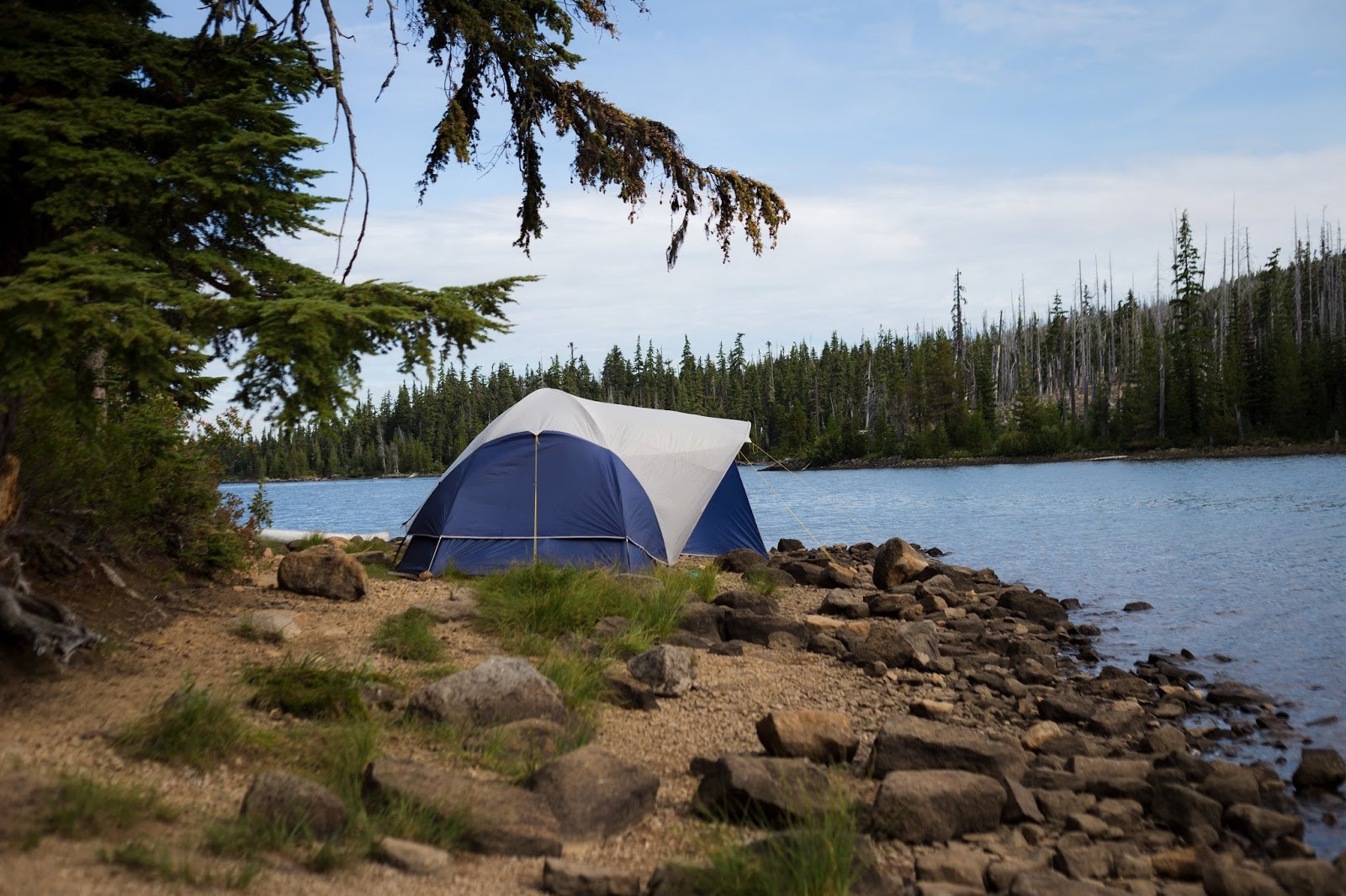 Olallie Lake 6 Campgrounds to Consider for Your Next Nature Excursion