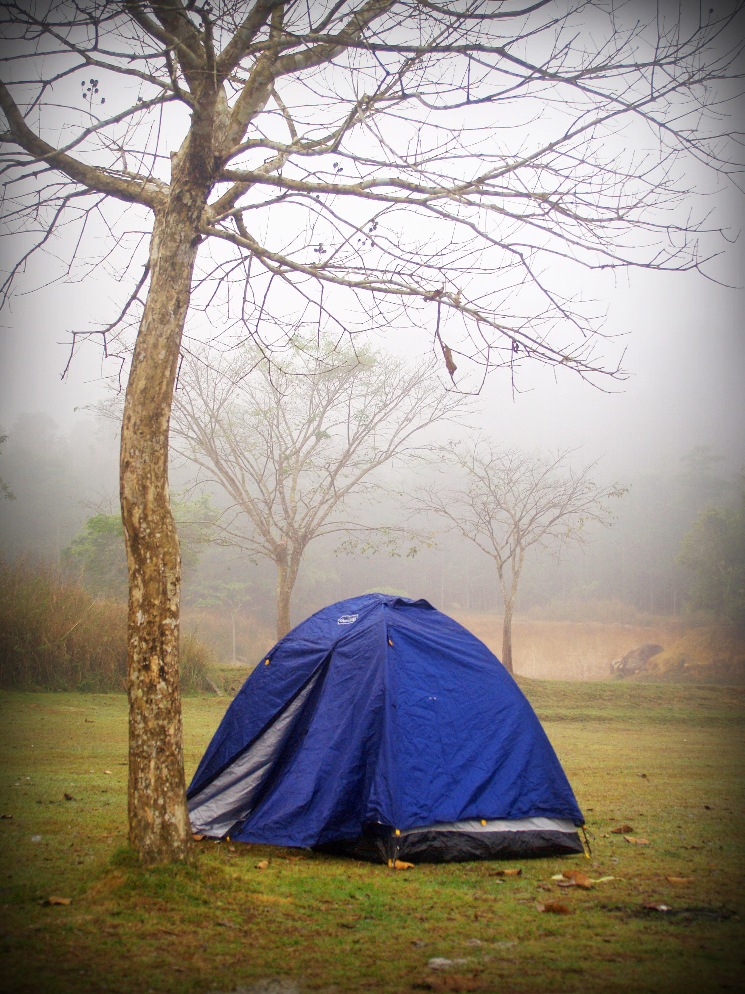Best tent for Cloudy Weather